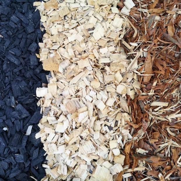 Musta koristekate, kokopuuhake, mäntykuorike